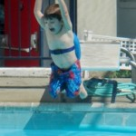 summer 14 pool